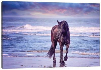 Running in the Sand I Canvas Art Print