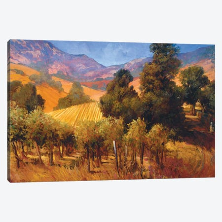 Southern Vineyard Hills Canvas Print #PHC10} by Philip Craig Canvas Art
