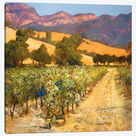 Wine Country Canvas Print #PHC12} by Philip Craig Canvas Wall Art