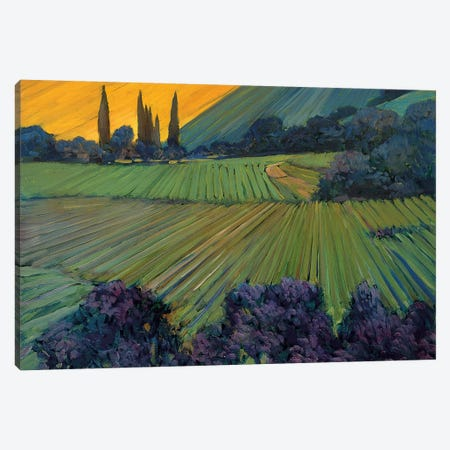 Champagne Vineyards Canvas Print #PHC1} by Philip Craig Art Print