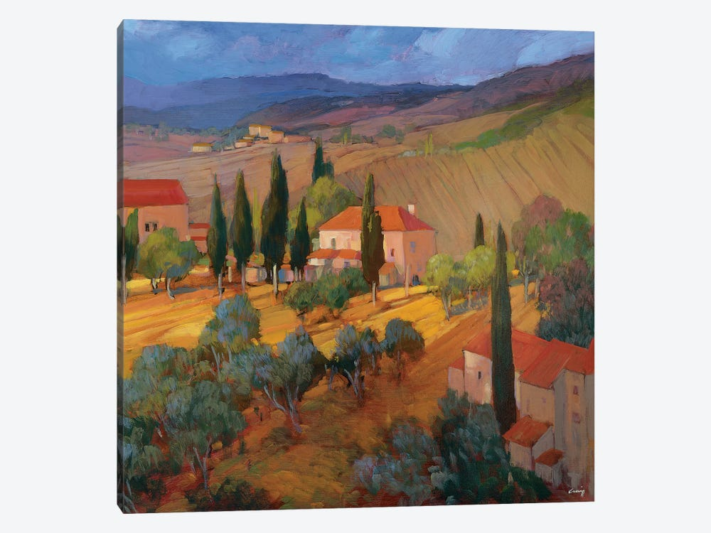 Coral Sunset Tuscany by Philip Craig 1-piece Art Print