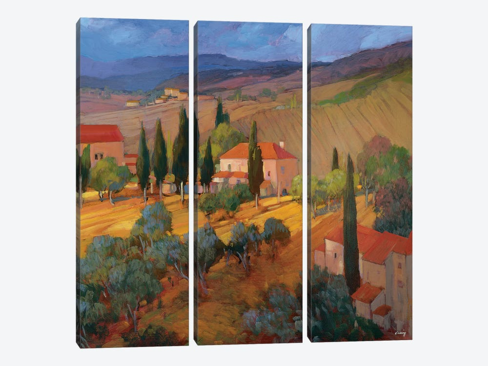 Coral Sunset Tuscany by Philip Craig 3-piece Canvas Print