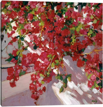 Hanging Flowers Canvas Art Print