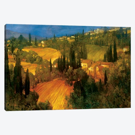 Hillside - Tuscany Canvas Print #PHC5} by Philip Craig Canvas Art