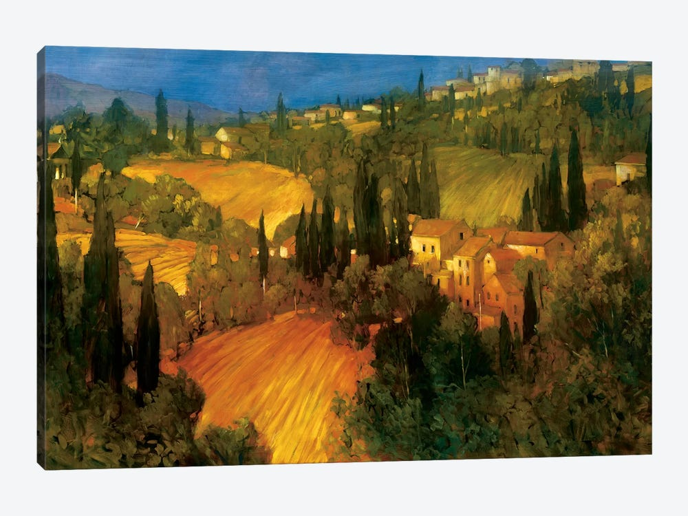 Hillside - Tuscany by Philip Craig 1-piece Canvas Artwork