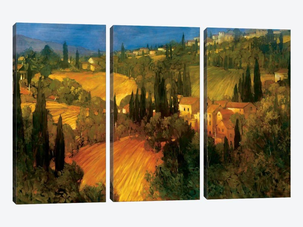 Hillside - Tuscany by Philip Craig 3-piece Canvas Art