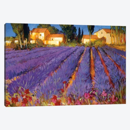Late Afternoon, Lavender Fields Canvas Print #PHC6} by Philip Craig Canvas Artwork