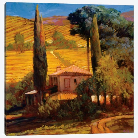 Tuscan Morning Light Canvas Print #PHC8} by Philip Craig Canvas Print