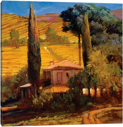Tuscan Morning Light Canvas Art Print