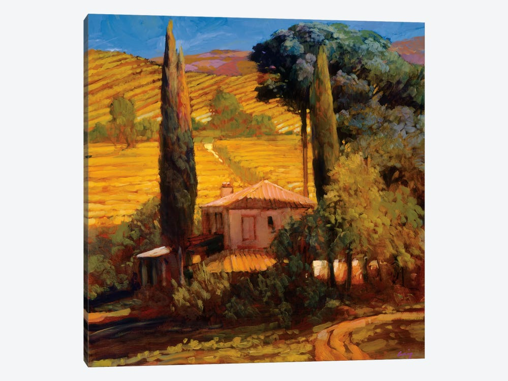 Tuscan Morning Light by Philip Craig 1-piece Art Print
