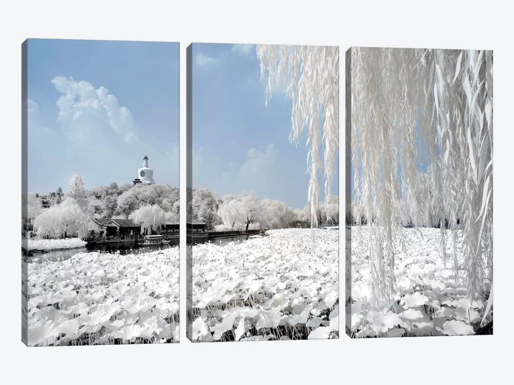 Another Look At China X by Philippe Hugonnard 3-piece Canvas Wall Art