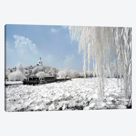 Another Look At China X Canvas Print #PHD103} by Philippe Hugonnard Canvas Art Print