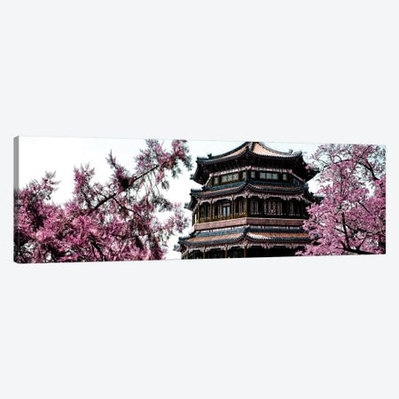 Pink Spring I Canvas Print #PHD128} by Philippe Hugonnard Canvas Art Print