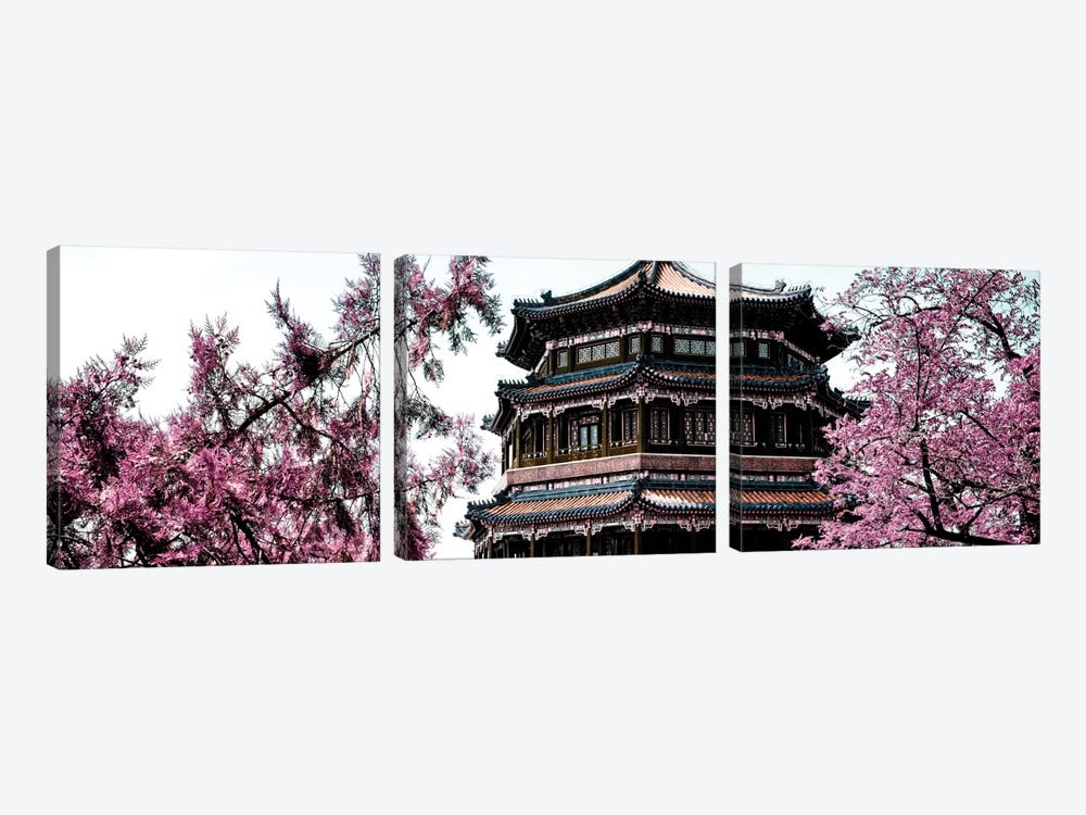 Pink Spring I by Philippe Hugonnard 3-piece Art Print