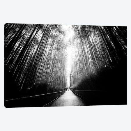 Arashiyama Bamboo Forest 3-Piece Canvas #PHD1295} by Philippe Hugonnard Canvas Art Print