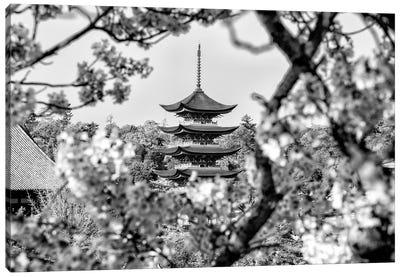 Pagoda Cherry Blossom Canvas Art Print