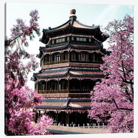 Pink Spring II Canvas Print #PHD129} by Philippe Hugonnard Canvas Art Print