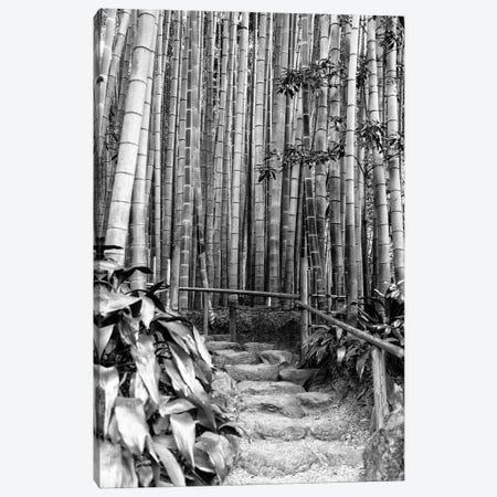 Between Bamboos Canvas Print #PHD1311} by Philippe Hugonnard Canvas Art Print