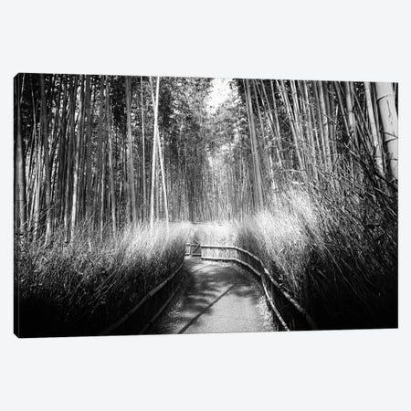 Kyoto Bamboo Trail Canvas Print #PHD1348} by Philippe Hugonnard Canvas Artwork