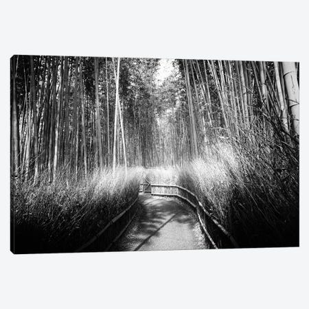 Kyoto Bamboo Trail Canvas Print #PHD1348} by Philippe Hugonnard Canvas Artwork