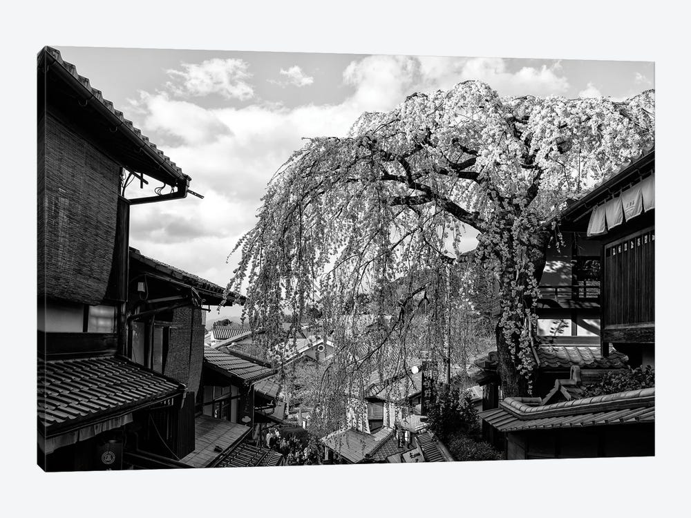 Kyoto Cherry Blossoms by Philippe Hugonnard 1-piece Canvas Art Print