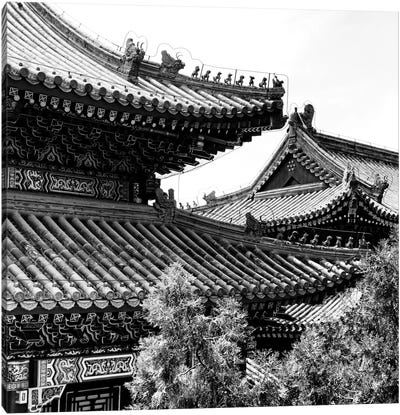 Temple Roofs Canvas Art Print