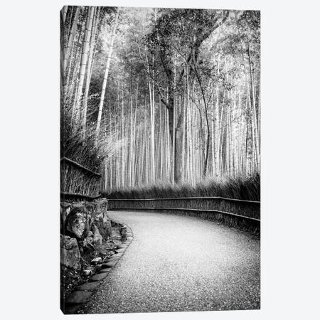 Path To Bamboo Forest Canvas Print #PHD1390} by Philippe Hugonnard Art Print