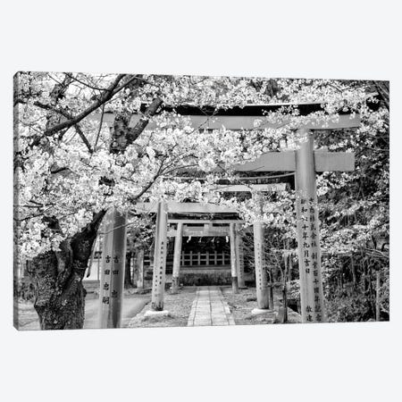 Yoshida Shrine Torii Canvas Print #PHD1394} by Philippe Hugonnard Canvas Art