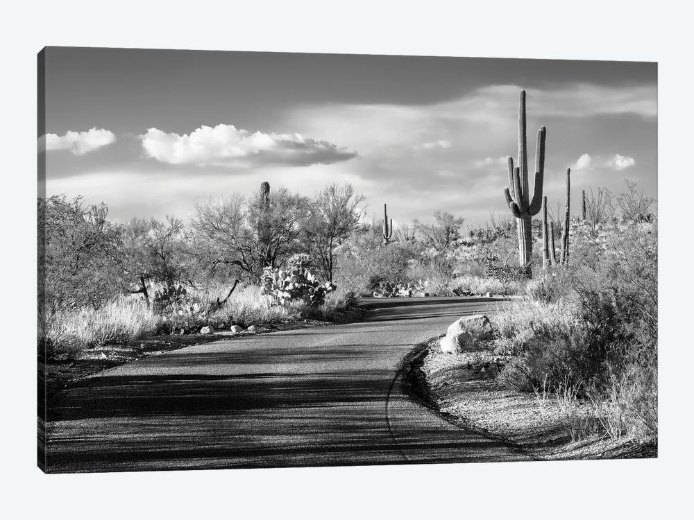 Black Arizona Series - Desert Road by Philippe Hugonnard 1-piece Canvas Art Print