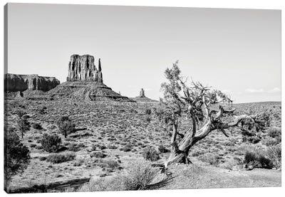 Black Arizona Series - Beautiful Nature Monument Valley Canvas Art Print