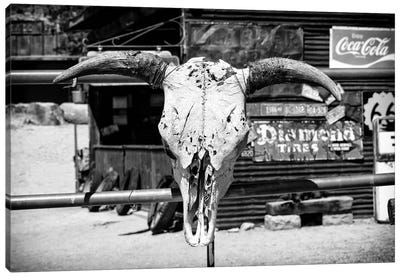 Black Arizona Series - Animal Skull Route 66 Canvas Art Print