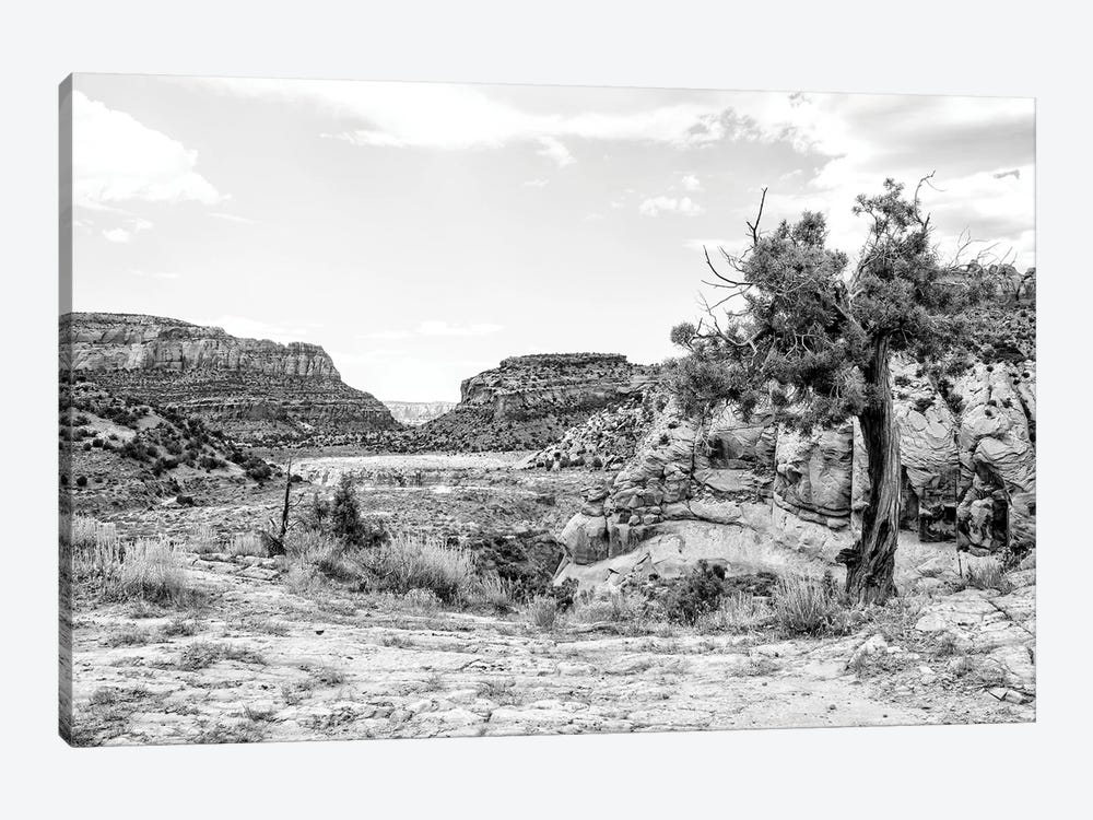 Black Arizona Series - In The Valley by Philippe Hugonnard 1-piece Canvas Print