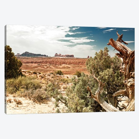 Desert Nature 3-Piece Canvas #PHD156} by Philippe Hugonnard Canvas Art Print