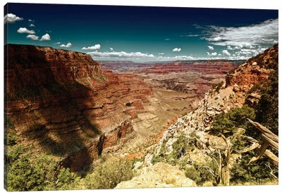 Grand Canyon Canvas Art Print