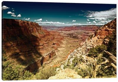 Grand Canyon Canvas Print #PHD158