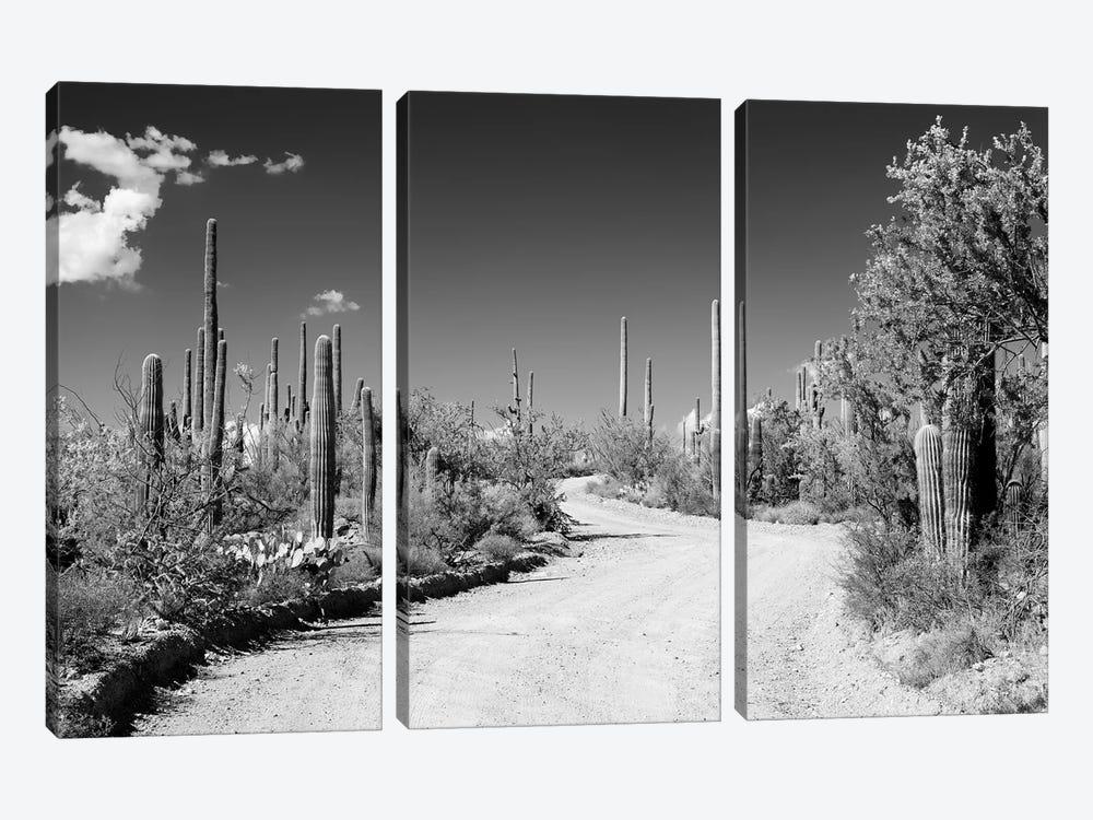 Black Arizona Series - Along The Path by Philippe Hugonnard 3-piece Canvas Art