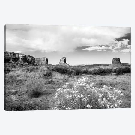 Black Arizona Series - The Monument Valley Canvas Print #PHD1604} by Philippe Hugonnard Canvas Wall Art