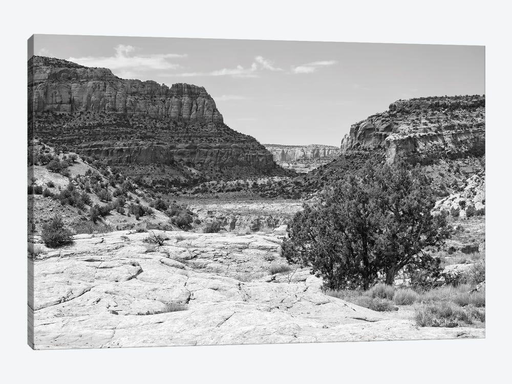 Black Arizona Series - The Valley by Philippe Hugonnard 1-piece Art Print