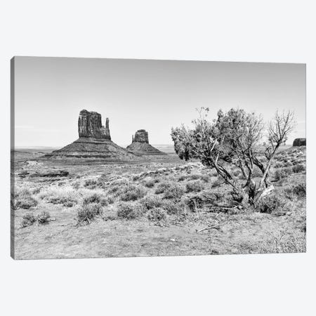 Black Arizona Series - The Monument Valley V Canvas Print #PHD1621} by Philippe Hugonnard Canvas Art Print