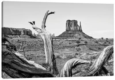 Black Arizona Series - Amazing Monument Valley Canvas Art Print