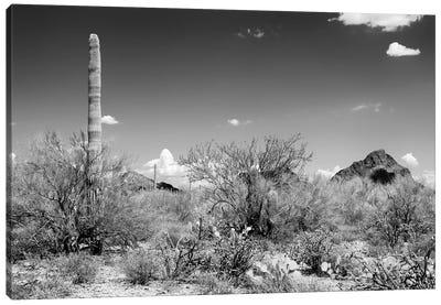 Black Arizona Series - Beautiful Nature Canvas Art Print