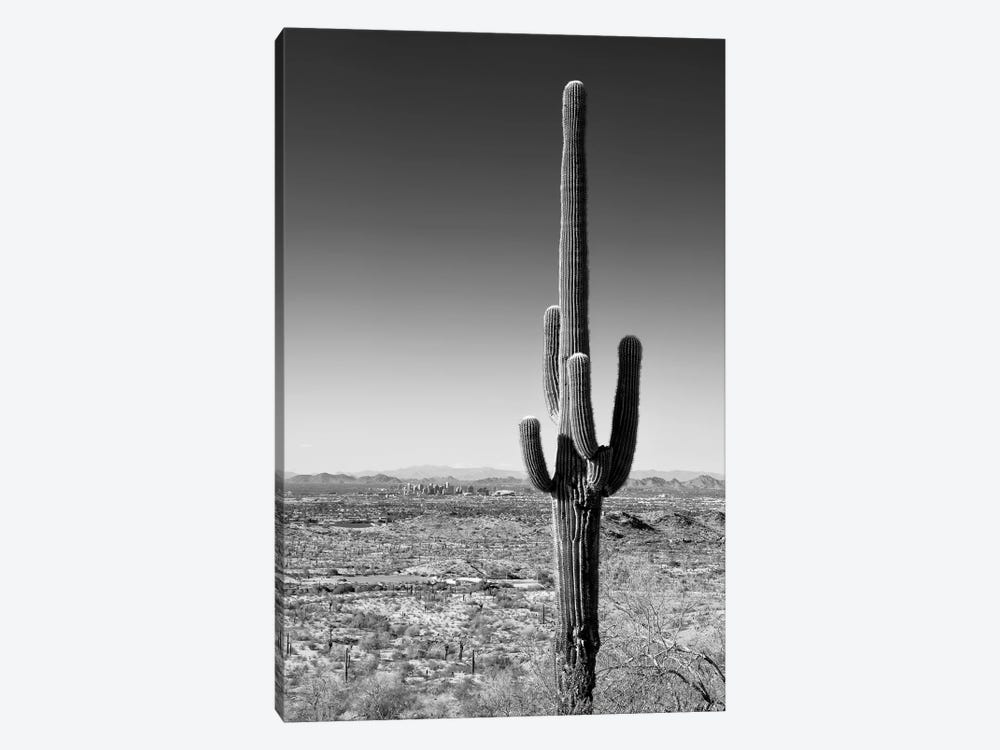 Black Arizona Series - One Cactus by Philippe Hugonnard 1-piece Canvas Art