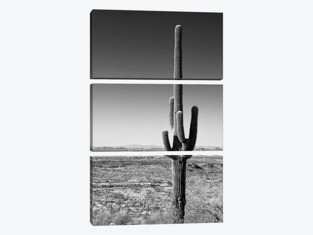 Black Arizona Series - One Cactus by Philippe Hugonnard 3-piece Canvas Artwork