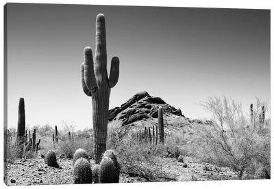 Black Arizona Series - Lost In The Desert Canvas Art Print