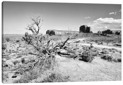 Black Arizona Series -Beautiful Monument Valley Navajo Tribal Park Canvas Art Print