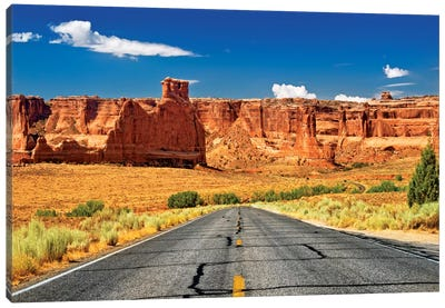 Scenic Drive Canvas Art Print