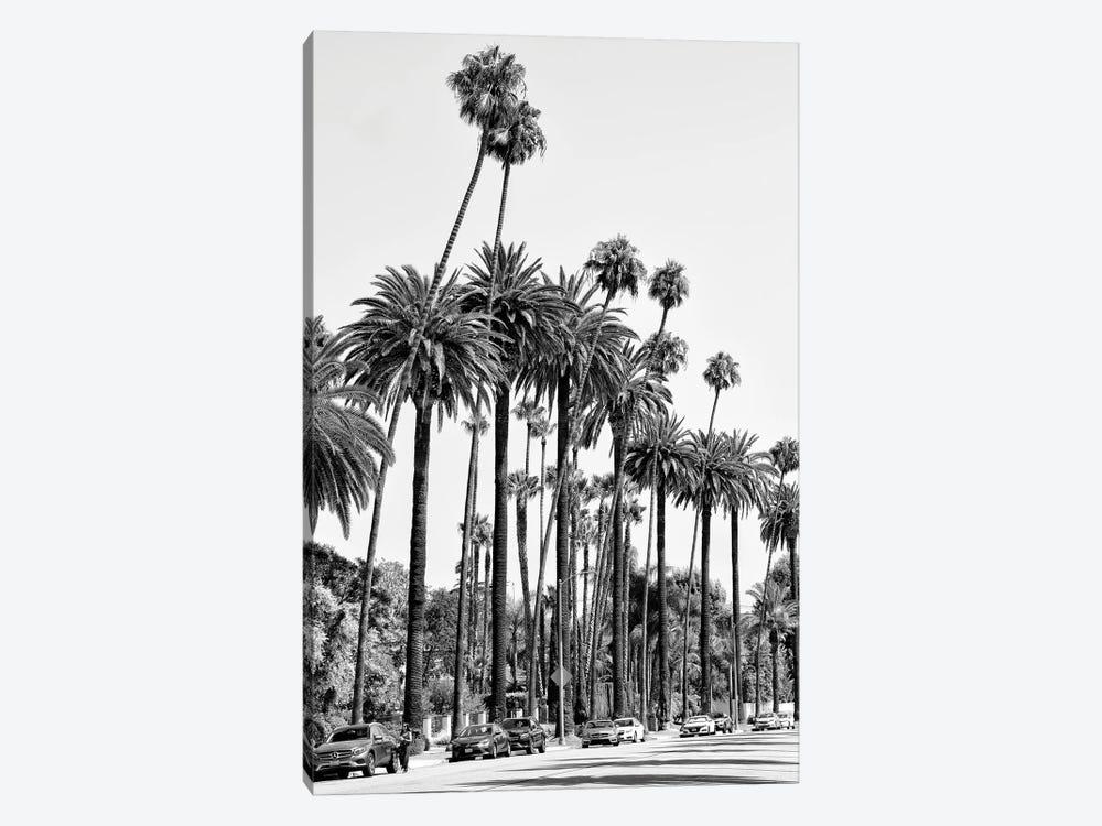 Black California Series - L.A's Palm Trees by Philippe Hugonnard 1-piece Canvas Artwork