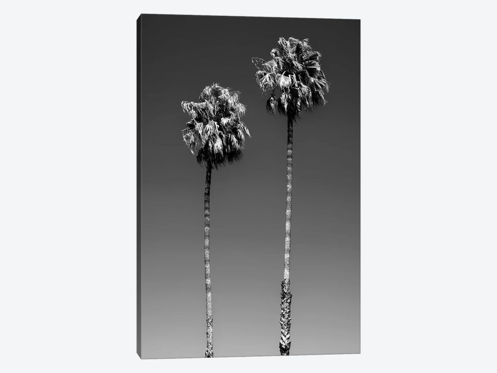 Black California Series - Beverly Hills Palm Trees by Philippe Hugonnard 1-piece Canvas Print