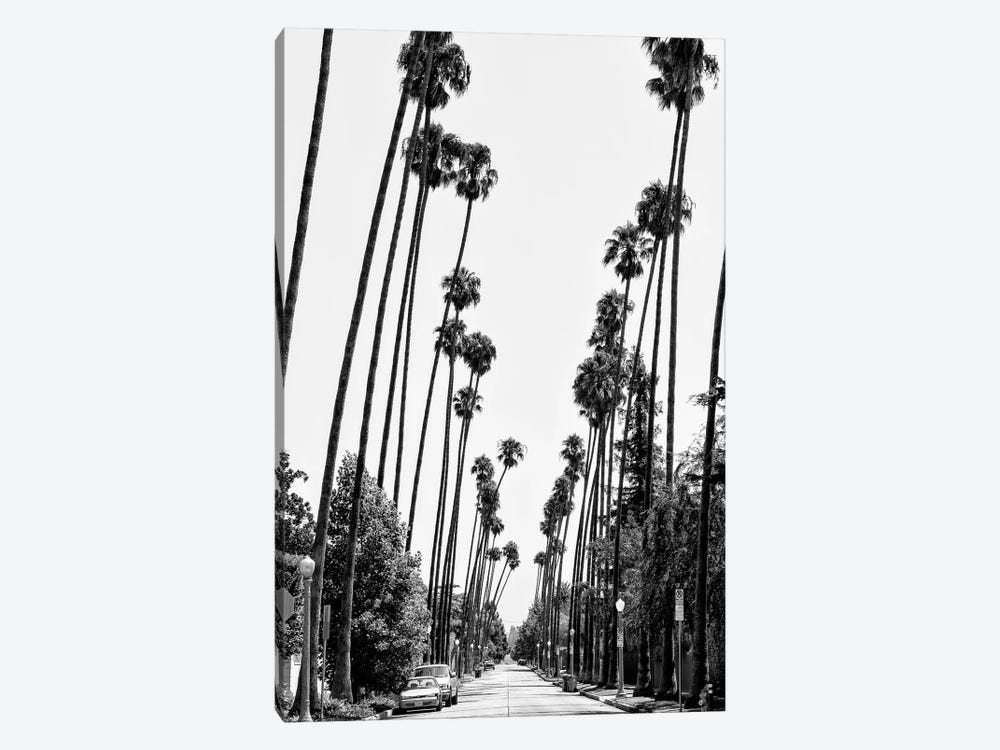 Black California Series - Palm Trees Road by Philippe Hugonnard 1-piece Art Print