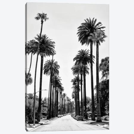 Black California Series - Beverly Hills Palm Alley Canvas Print #PHD1820} by Philippe Hugonnard Canvas Print